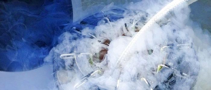 Zunehmend und immer häufiger nachgefragt – Social Freezing (Kryokonservierung von Eizellen zum Erhalt der Fertilität)